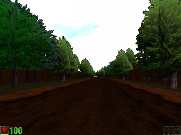 Foliage - Trees