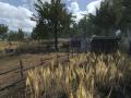Start your own farm