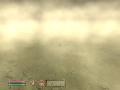 Sandstorm, you cant see jack