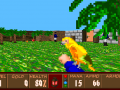 The Golden Parrot (Wolfenstein 3D)