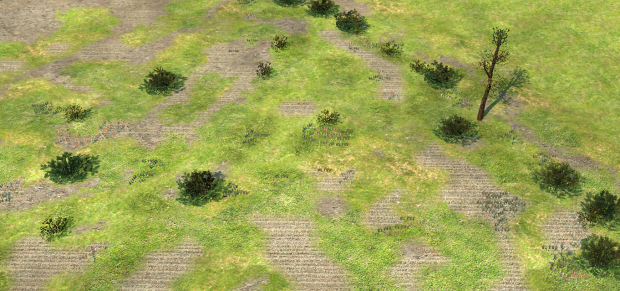 New terrain and plants