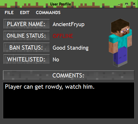 Player Profiles (WIP) image - Ultimate Minecraft Server