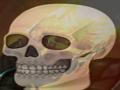 Skeleton War: Veteran Edition