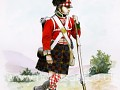 79th Cameron Highlanders Skin for NW