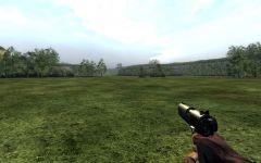 New NF Pistol