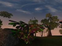 Joyful Morrowind - Max a.k.a Nobody