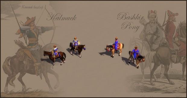 Kalmuck & Bashkir Pony