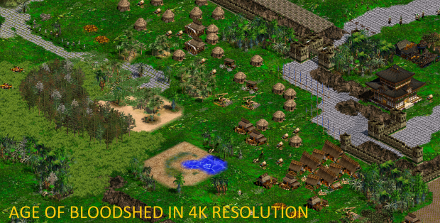 Age of Bloodshed 4K Resolution