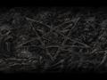 DOOM Forever (3DGE mod)