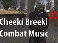 Call of Chernobyl Cheeki Breeki Combat Music