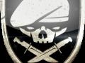 Medal of Valor: global strike