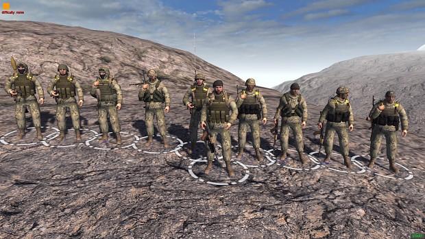 10th Mountain Assault Brigade