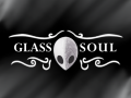 Hollow Knight: Glass Soul (OUTDATED)
