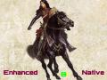 Enhanced Native BR