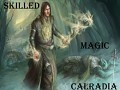 Skilled Magic Calradia