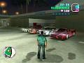 Grand Theft Auto Wild City