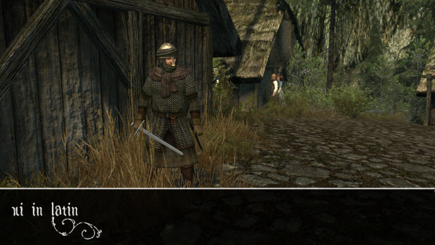 Vlandian Knight in a Rhodok village