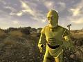 C-3PO Companion