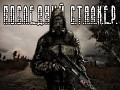 The Last S.T.A.L.K.E.R [ENG]