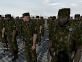 U.Brazilian Forces
