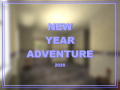 New Year Adventure