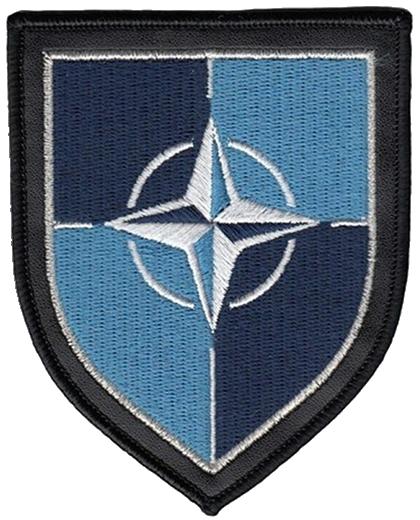 S.T.A.L.K.E.R . The Cursed Zone: Dimka's Story / Factions - NATO UA.