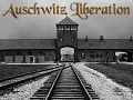 Call of Duty 2 The Auschwitz Liberation