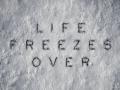 Life Freezes Over