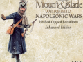 Napoleonic wars : 9thRC Enhanced Edition