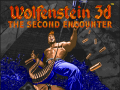 Wolfenstein 3D The Second Encounter