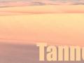 Tannerlord (Preliminary Reshade Preset)