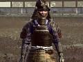 Just another Customized Darthmod for Shogun 2