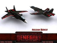 Russian Berkut Fighter