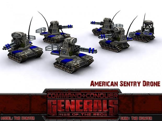 Sentry Drone