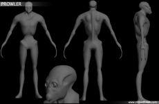 Xenoform- Prowler