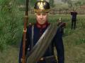 Napoleonic Wars Blood and Iron Prussian Reskin