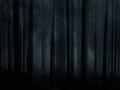 The dark secret of Forest