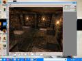 Return to Castle Wolfenstein(amnesia style)