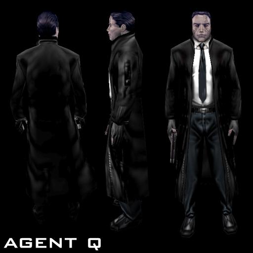 Agent Q