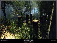 Jungle 6