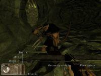 In game HUD