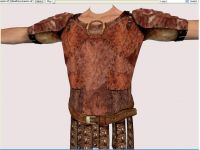 Leather Armour (1)