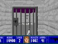 The Lost Missions (Wolfenstein 3D)
