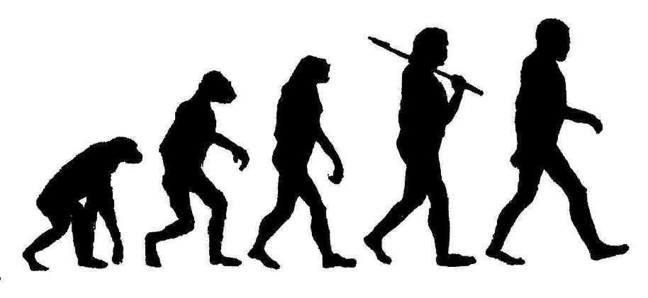 is evolution pseudoscience debunked news atheists agnostics and
