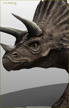 Triceratops model by Wesh2k2