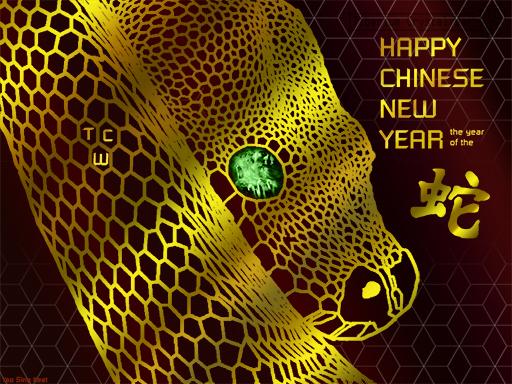 2013_Chinese_New_Year.jpg