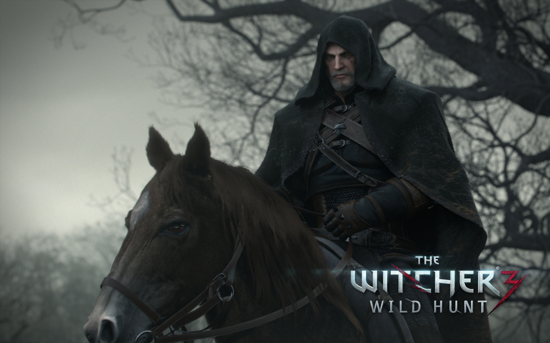 The Witcher 3: Wild Hunt + Trailer