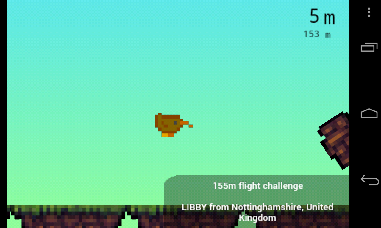 Wild Kiwi Flight Challenge screenshot