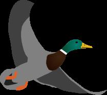 Wild Duck Games logo