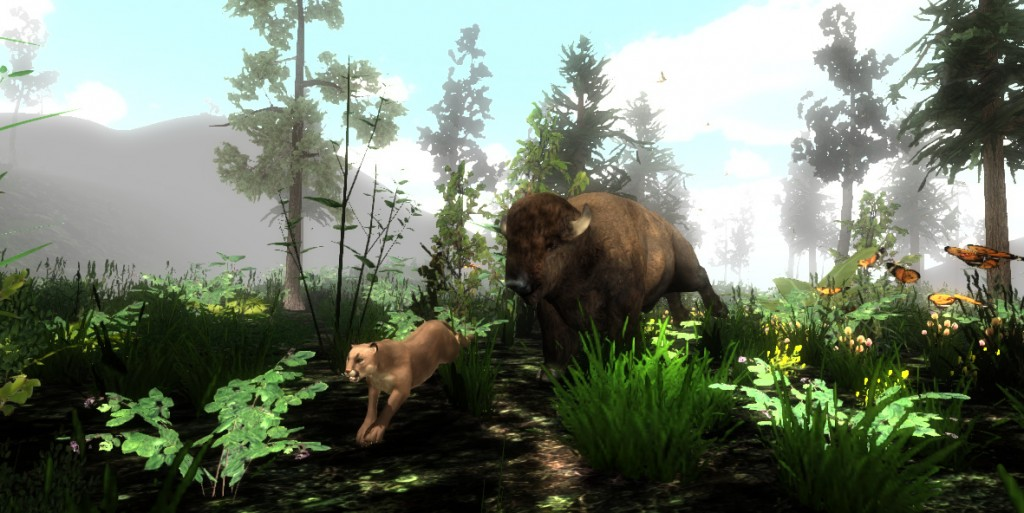 Bison vs Cougar
